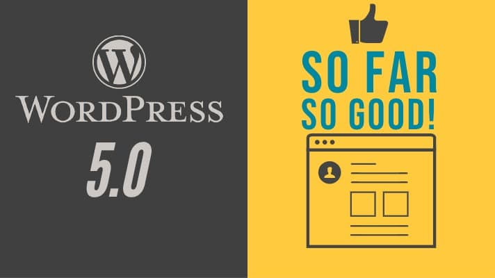 Wordpress 5.0 So Far So Good